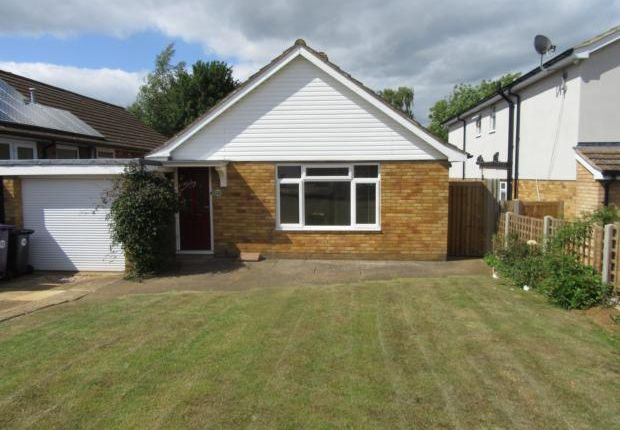 Thumbnail Bungalow to rent in Lavender Way, Hitchin