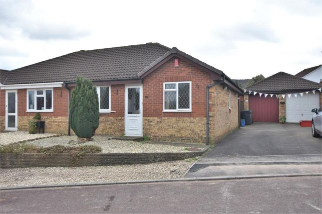 Thumbnail Semi-detached bungalow to rent in Rowan Close, Honiton, Devon