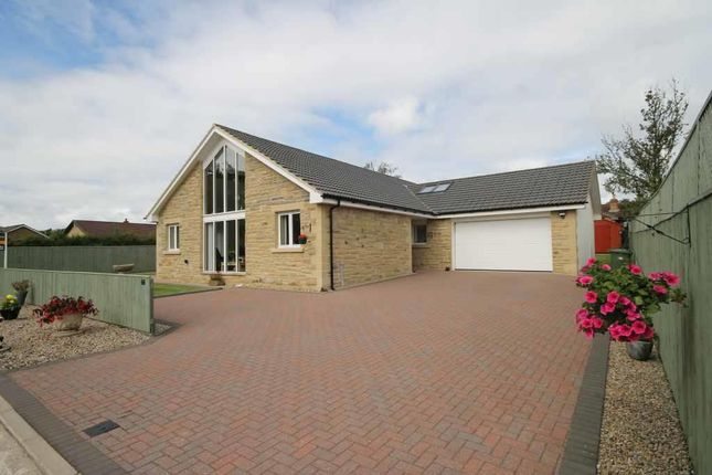 Thumbnail Detached bungalow for sale in Kenmore Road, Swarland, Morpeth, Northumberland