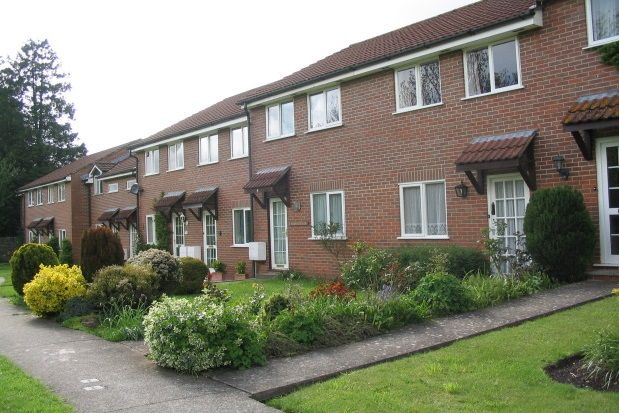 Thumbnail Terraced house to rent in Tor Wood View, Wells