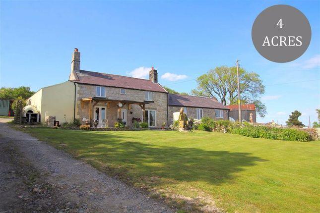 Farmhouse for sale in Mynydd Du, Nercwys, Denbighshire