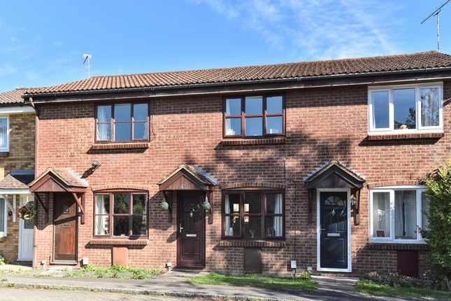 Thumbnail Terraced house to rent in GU16, Frimley,