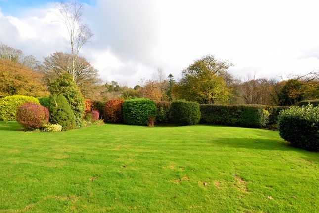 Photo 7 of Clearbrook, Yelverton PL20