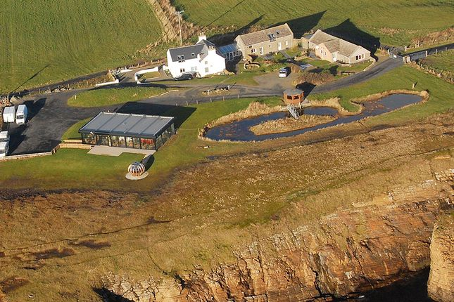 Thumbnail Leisure/hospitality for sale in Banks Of Orkney - Accommodation, Restaurant And Attraction, Cleat, South Ronaldsay, Orkney
