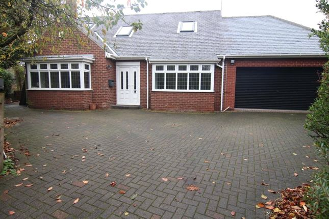 Thumbnail Detached house to rent in Springwell Road, North End, Durham