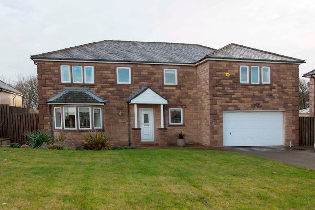 Thumbnail Detached house for sale in The Headlands, Heysham, Morecambe