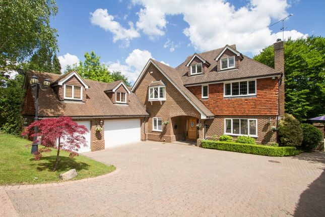 Thumbnail Detached house to rent in Farnham Lane, Haslemere