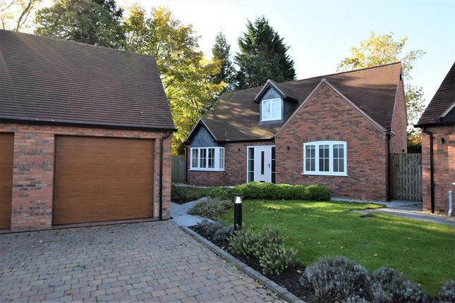 Thumbnail Bungalow for sale in Doctors Close, Tanworth-In-Arden, Solihull