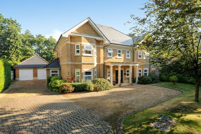 Thumbnail Detached house to rent in Alpine Close, Hancocks Mount, Ascot