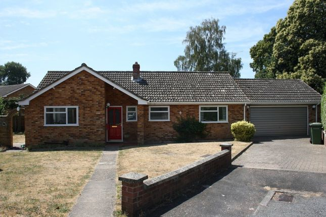 Thumbnail Detached bungalow to rent in Monksgate, Thetford