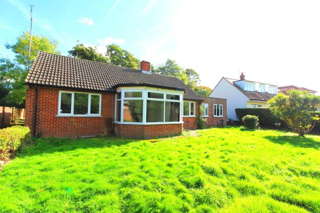 Thumbnail Bungalow to rent in Ascot Road, Holyport, Maidenhead