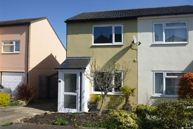 Thumbnail Property to rent in Kirby Close, Axminster