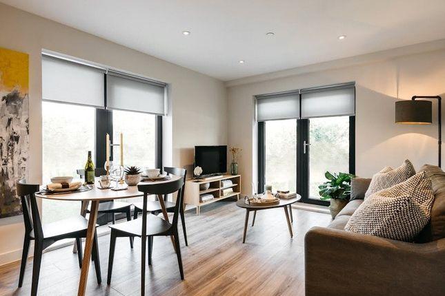 Thumbnail Detached house to rent in Windsor Bridge Road, Bath, Someret