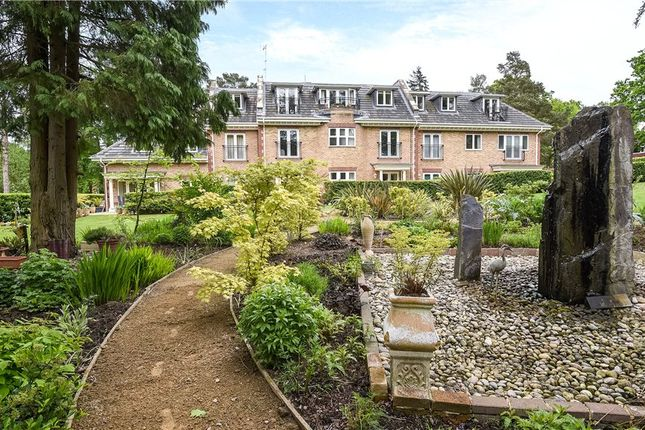 Grounds of Wellington Mansions, Ardwell Close, Crowthorne RG45