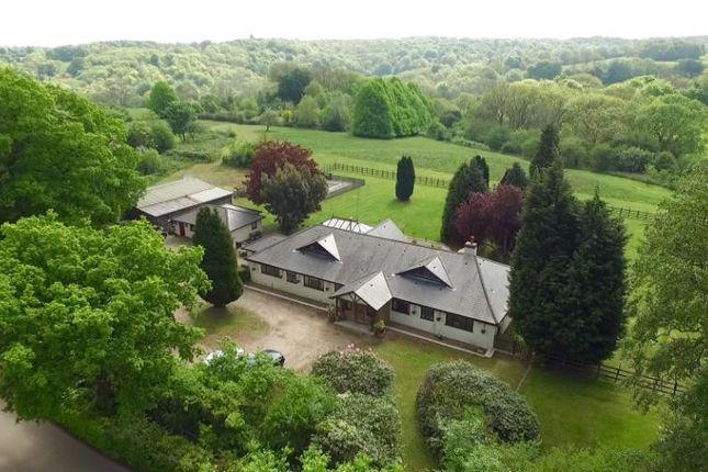 Thumbnail Equestrian property for sale in Buckhurst Road, Westerham, Kent