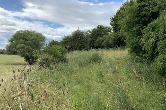 Picture No. 17 of Land At Stourpaine, Blandford, Dorset DT11