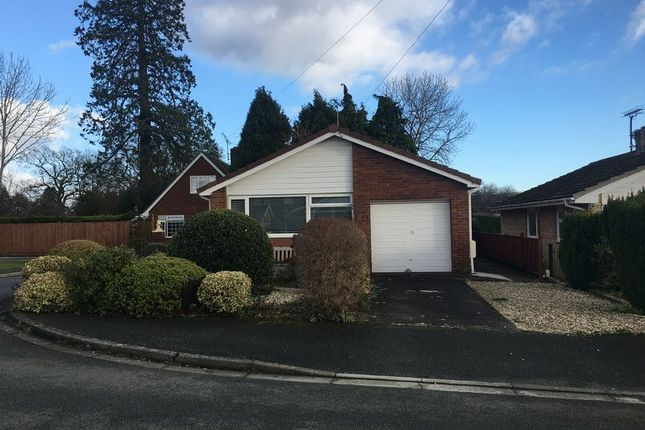 Thumbnail Detached bungalow for sale in Mineah Drive, Guilsfield, Welshpool