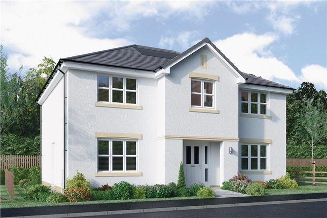 """Thumbnail Detached house for sale in """"Hopkirk"""" at Bellenden Grove, Dunblane"""