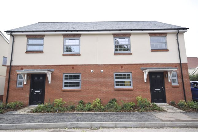 Thumbnail Semi-detached house to rent in Dabinett Drive, Sandford, Winscombe
