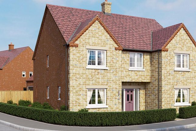 "Thumbnail Detached house for sale in ""The Oakham"" at Boughton Road, Moulton, Northampton"