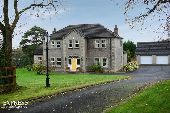Thumbnail Detached house for sale in Legaterriff Road, Ballinderry Upper, Lisburn, County Antrim