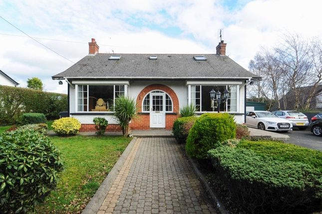 Thumbnail Detached house for sale in Carrowreagh Lane, Dundonald