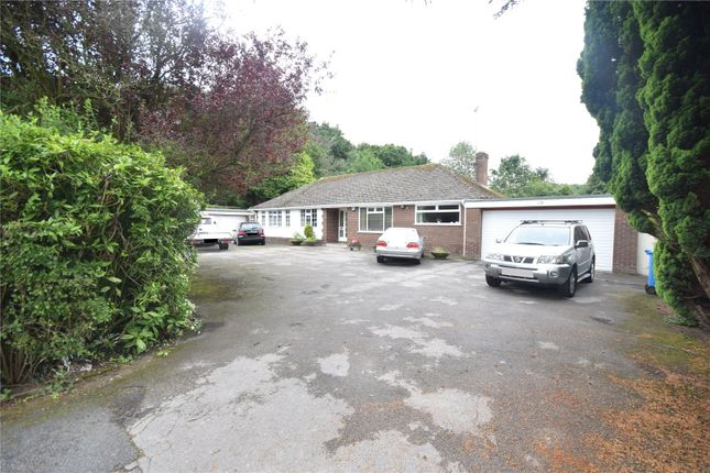 Thumbnail Bungalow for sale in Ormskirk Road, Knowsley, Prescot