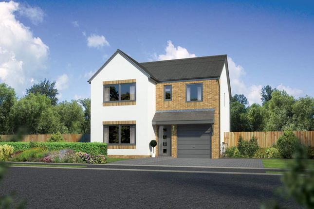 "Thumbnail Detached house for sale in ""Dukeswood"" at Countesswells Park Place, Countesswells, Aberdeen"
