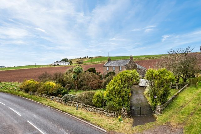 Thumbnail Detached house for sale in Benholm, Montrose, Angus