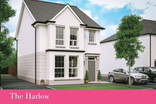 Thumbnail Detached house for sale in Harlow Green, Meeting Street, Moira