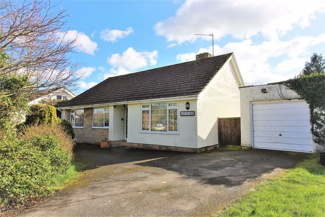 Thumbnail Detached bungalow for sale in Broadway, Ilminster