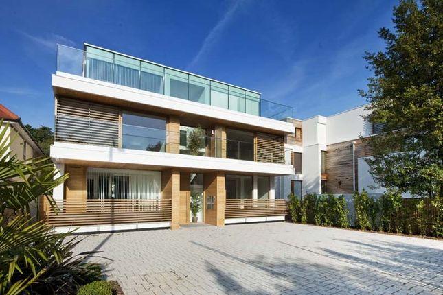Thumbnail Duplex to rent in Waldegrave Road, Twickenham