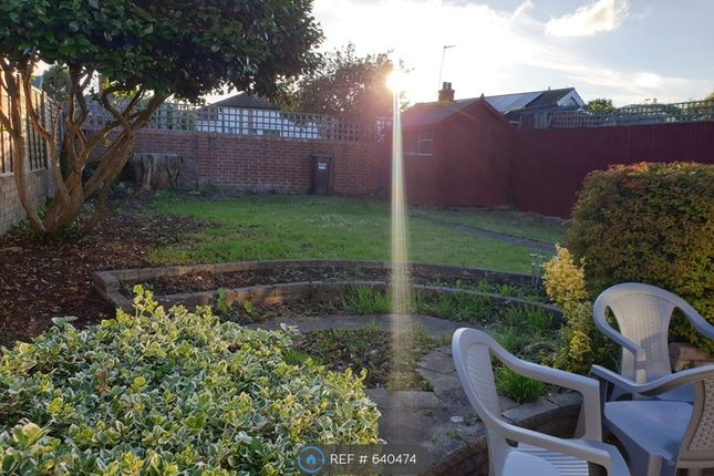 Thumbnail Bungalow to rent in Green Lane, Middlesex