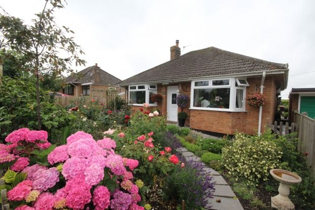 Thumbnail Detached bungalow for sale in Cliff Road, North Petherton, Bridgwater