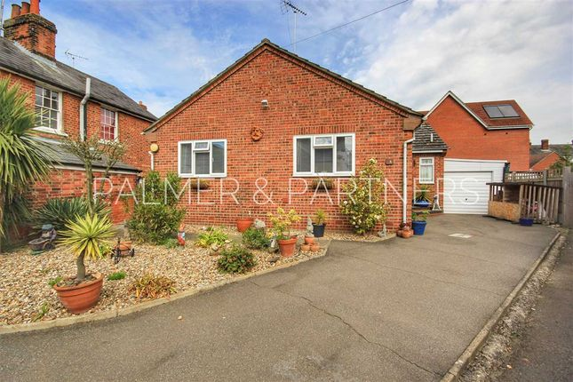 Thumbnail Detached bungalow for sale in Garden Terrace, Halstead