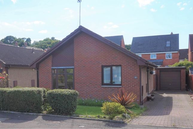 Thumbnail Detached bungalow for sale in Kinacres Grove, Bo'ness