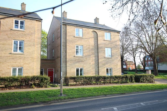 Thumbnail Town house for sale in Circular Road South, Colchester