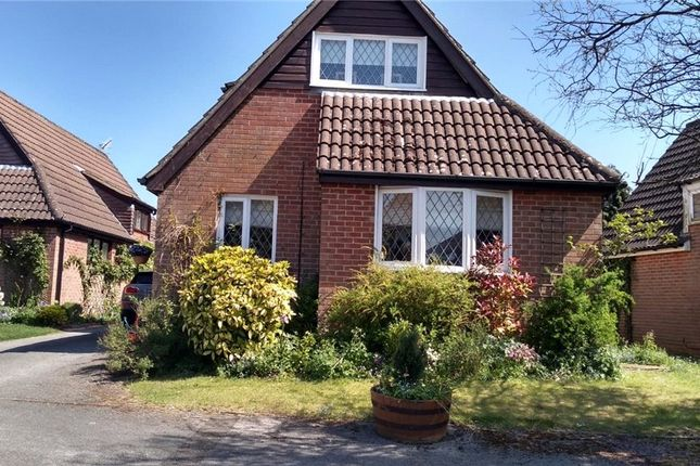 Picture No. 05 of Thornfield Close, Clanfield, Waterlooville PO8