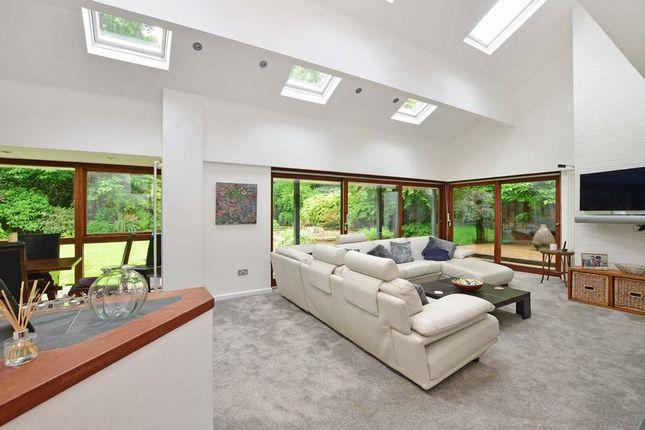 Light & Airy Interior