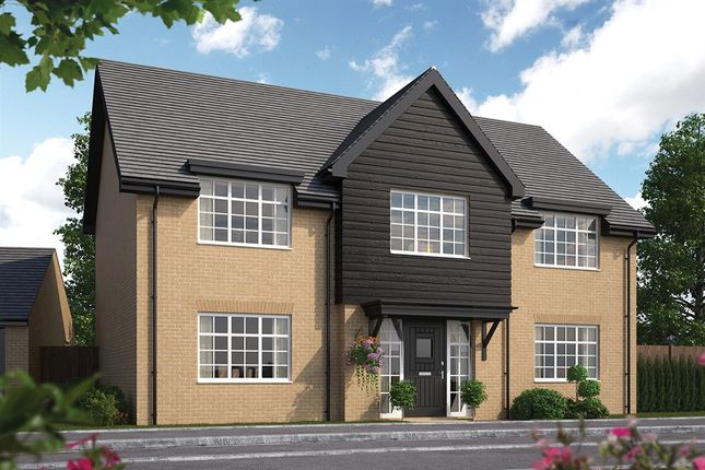 Thumbnail Detached house for sale in Baldock Road, Royston