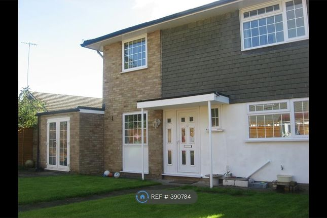 Thumbnail Detached house to rent in Adcock Walk, Kent