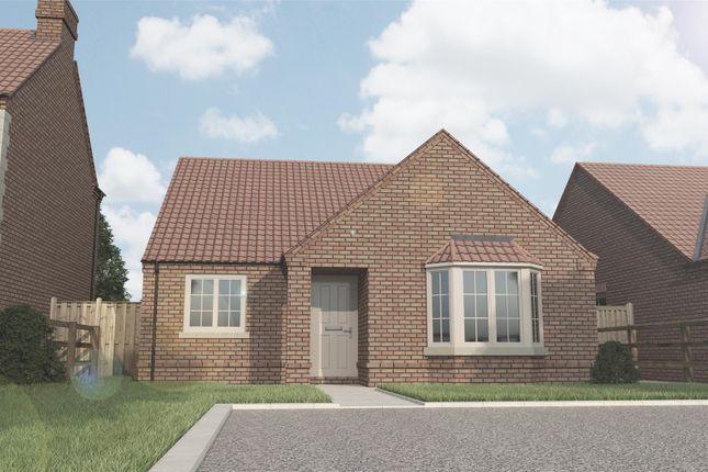 Thumbnail Detached bungalow for sale in Plot 2 Walcott Grove, Walcott Road, Billinghay, Lincolnshire