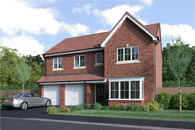 """Thumbnail Detached house for sale in """"Buttermere"""" at Hemsworth Road, Sheffield"""