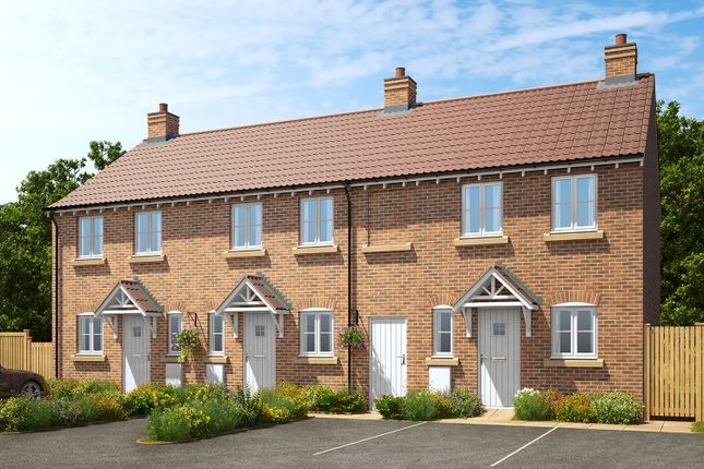 Thumbnail Terraced house for sale in Midland Road, Thrapston