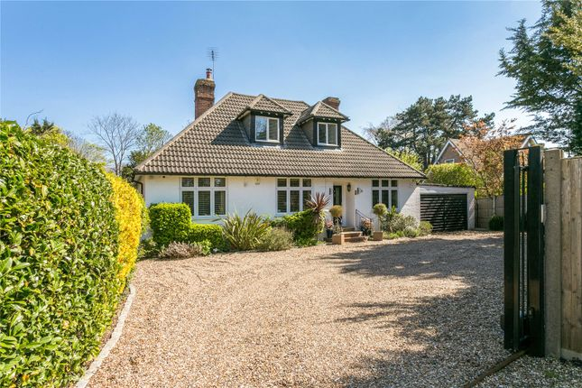 Thumbnail Detached house for sale in Bray Road, Maidenhead, Berkshire