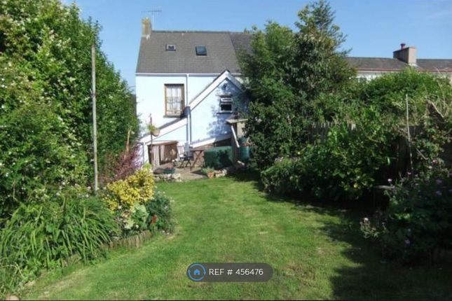 Thumbnail Semi-detached house to rent in Norgans Terrace, Pembroke