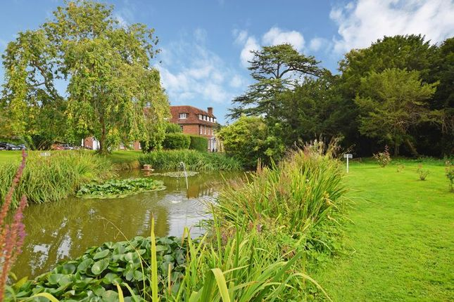 Grounds of Delves Close, Ringmer, Lewes BN8