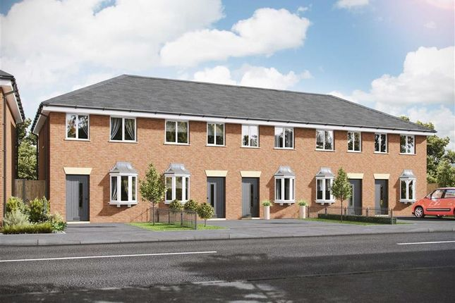 Thumbnail End terrace house for sale in Plot 11, St Helens