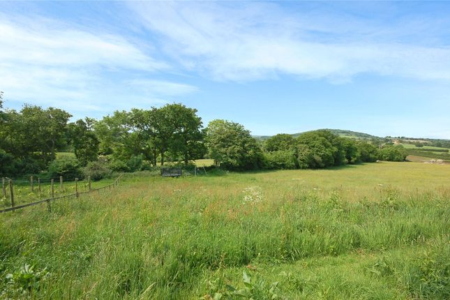 Thumbnail Detached house for sale in Long Cross, Shaftesbury, Dorset