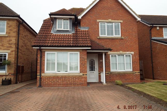Thumbnail Detached house to rent in Fulbeck Close, Hartlepool